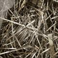 工業用銀の精錬買取